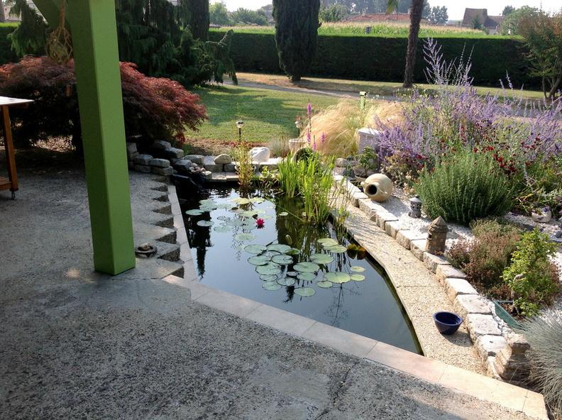 Mon jardin Japonais / Mon jardin japonais avec bassin   Regards ...