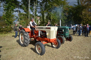 Défilé de tracteurs anciens