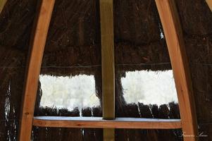 Photo prise depuis l'intérieur de la cabane