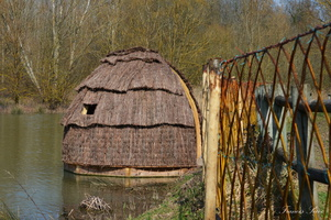 Cabane d'observation