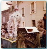 Fête des fleurs  Année 1979 (20)