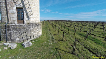 Photos prises par drone - Moulin à vent de Marquet du XVIII siècle (18)_GF