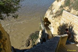 Grotte de Matata à Meschers   (31)