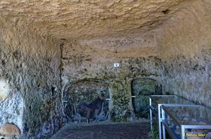 Grotte de Matata à Meschers   (14)