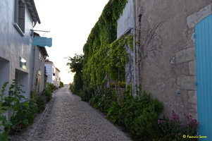 Talmont sur Gironde  (31)
