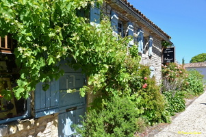 Talmont sur Gironde  (4)