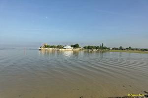 Talmont sur Gironde  (50)