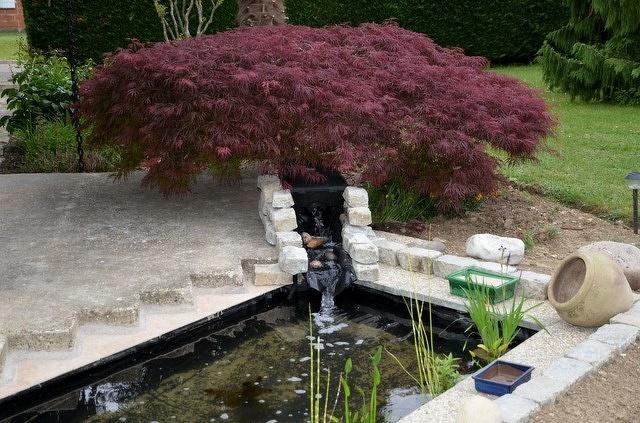 Pr sentation de mon bassin de 4 m3 - Profondeur d un bassin de jardin ...