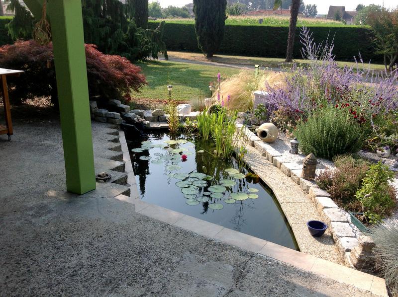 Mon bassin for Bache poisson