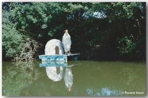 Fête des fleurs Année 1997 (6)