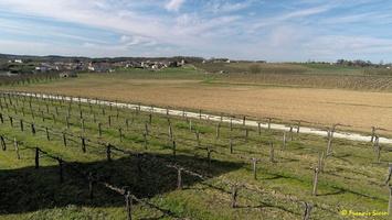 Photos prises par drone - Moulin à vent de Marquet du XVIII siècle (44)_GF