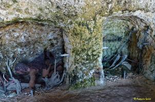 Grotte de Matata à Meschers   (50)