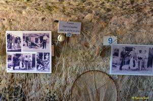 Grotte de Matata à Meschers   (30)