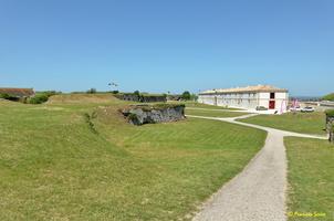 Ile d'Oléron  Chateau d'Oléron  (13)