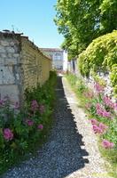 Talmont sur Gironde  (19)