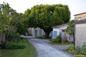 Talmont sur Gironde  (34)