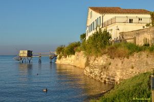 Talmont sur Gironde  (43)
