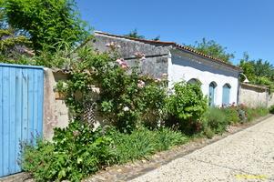 Talmont sur Gironde  (5)